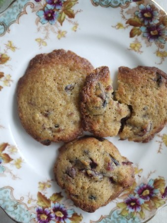 Cranberry chocolate and cinnamon cookie
